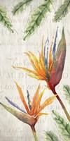 Tropical Blooms 2 Fine Art Print