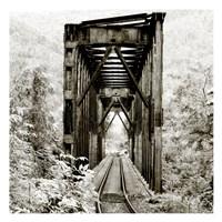 Along the Tracks 1 Fine Art Print
