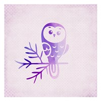 Purple Pink Owl 2 Fine Art Print