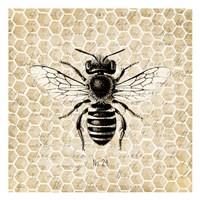 Honeycomb No 24 Fine Art Print