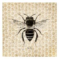 Honeycomb No 32 Fine Art Print
