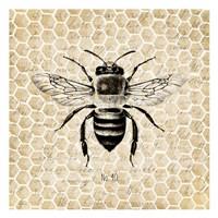Honeycomb No 40 Fine Art Print