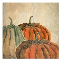 Fall Pumpkins Fine Art Print