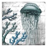 Under the Sea 1 Fine Art Print
