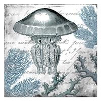 Under the Sea 3 Fine Art Print