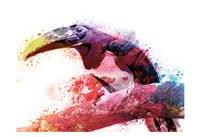 Marvelous Tucan Fine Art Print
