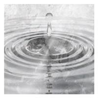 Silver Droplet Fine Art Print