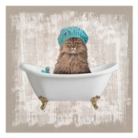 Kitty Baths 2 Fine Art Print
