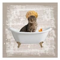 Kitty Baths 4 Fine Art Print