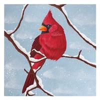 Nesting Winter Fine Art Print