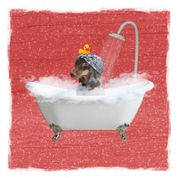 Steamy Bath 2 Fine Art Print