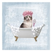 Fun Kitty Bath 1 Fine Art Print