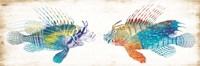 Fish Kiss Fine Art Print