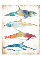 Colorful Sea Life Fine Art Print