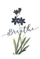 Breathe Fine Art Print
