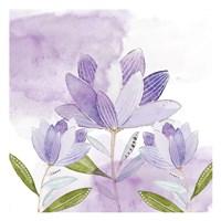 Purple Delight 1 Fine Art Print