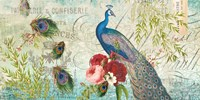 Peacock Blue 1 Fine Art Print