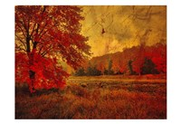 Fall In The Woods Fine Art Print