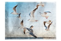 Fly With Friends Fine Art Print