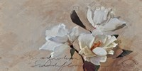 Suddenly Magnolia 2 Fine Art Print