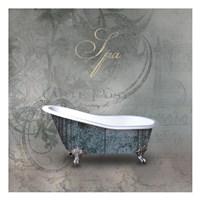 Silver Bath 2 Fine Art Print