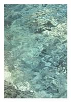 Water Series #8 Fine Art Print