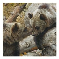 Alaska Chat (detail) Fine Art Print