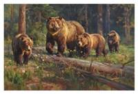 Wilderness Matriarch Fine Art Print