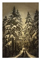 Wagner Creek Snow Fine Art Print