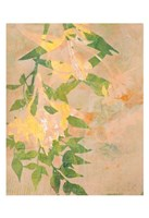 Spring Passage Fine Art Print