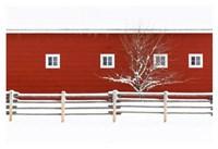 Red Bitterroot Barn Fine Art Print