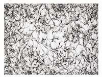 Wind Fine Art Print