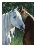 Horse Whispering Fine Art Print
