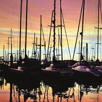 Harbor Sunset Fine Art Print