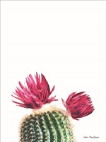 Flowered Cactus Fine Art Print