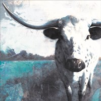 Cow Close Up Fine Art Print