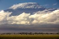 Amboseli National Park, Kenya Fine Art Print