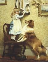 Little Girl and Her Sheltie Framed Print
