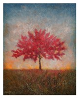 Red Bud No. 1 Fine Art Print