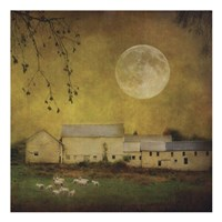 Sheep Under a Harvest Moon Fine Art Print