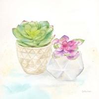 Sweet Succulent Pots III Framed Print