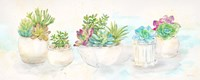 Sweet Succulents Panel Fine Art Print