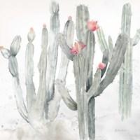 Cactus Garden Gray Blush II Framed Print