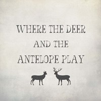 Where the Deer and Antelope Fine Art Print