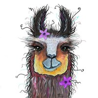 Llama with Purple Flower Fine Art Print