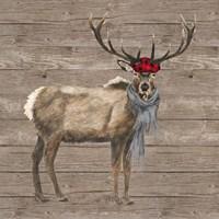 Warm in the Wilderness Deer Framed Print