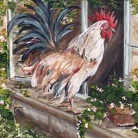 French Country Rooster Fine Art Print