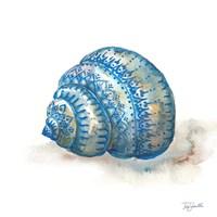 Bohemian Shells I Fine Art Print