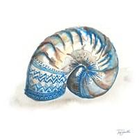 Bohemian Shells IV Fine Art Print
