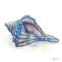 Bohemian Shells V Fine Art Print